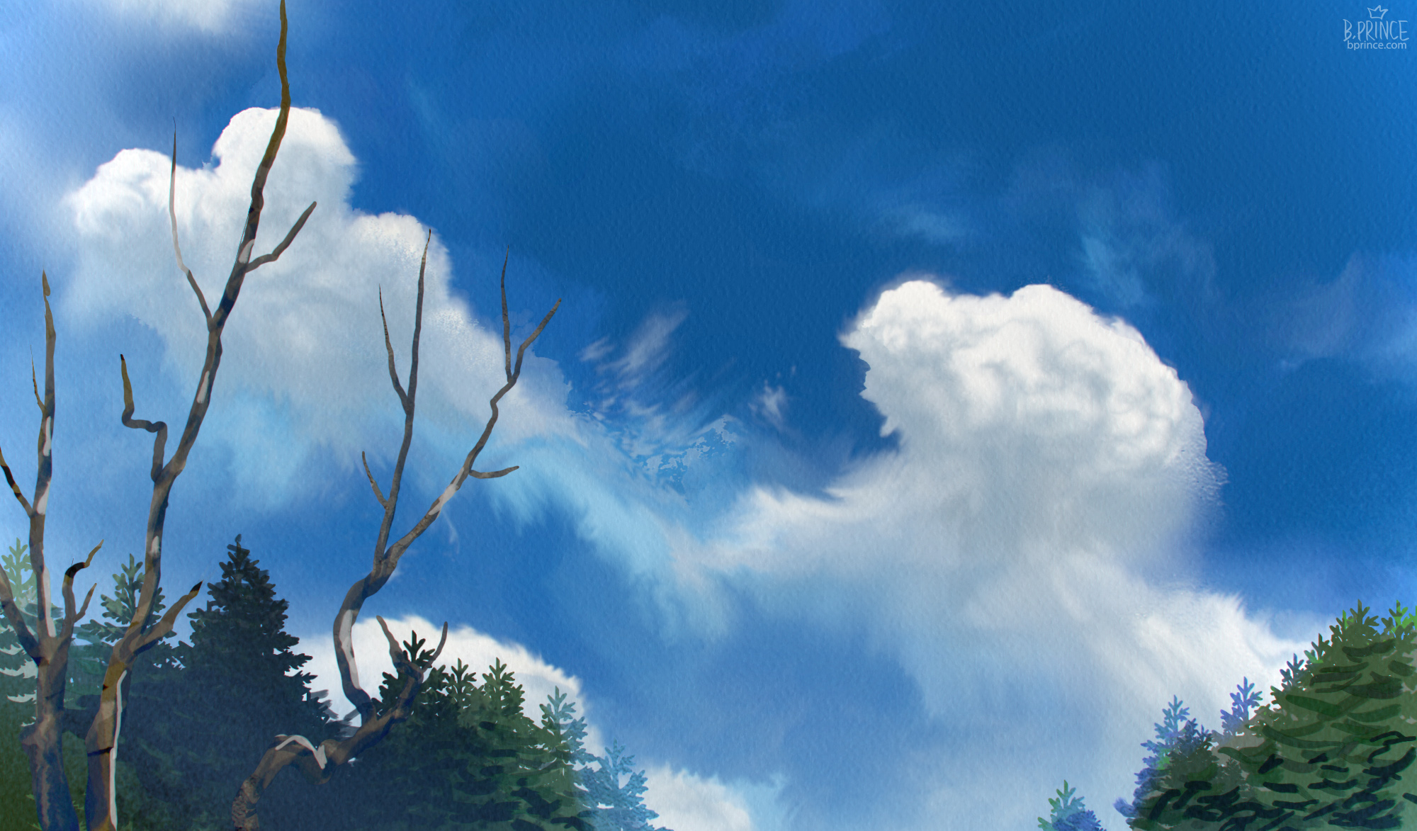 fluffy, windswept clouds in a blue sky