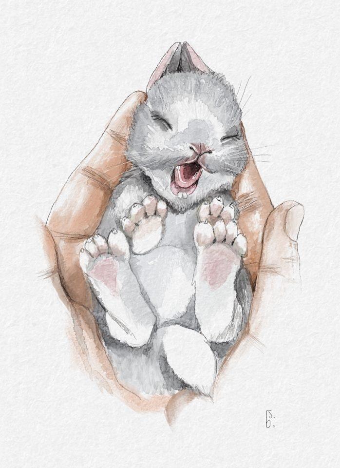 My Bunny!