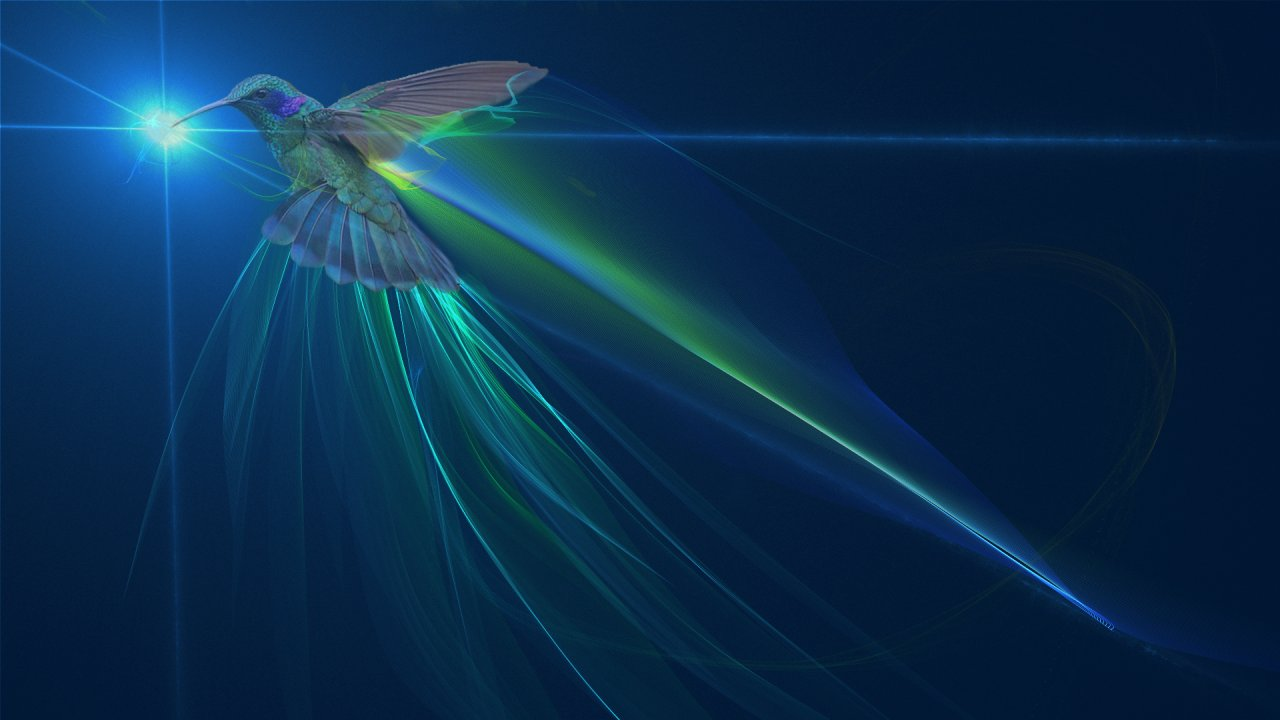 magic Hummingbird